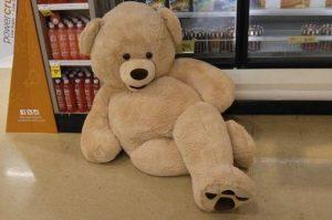 seductive-bear-3